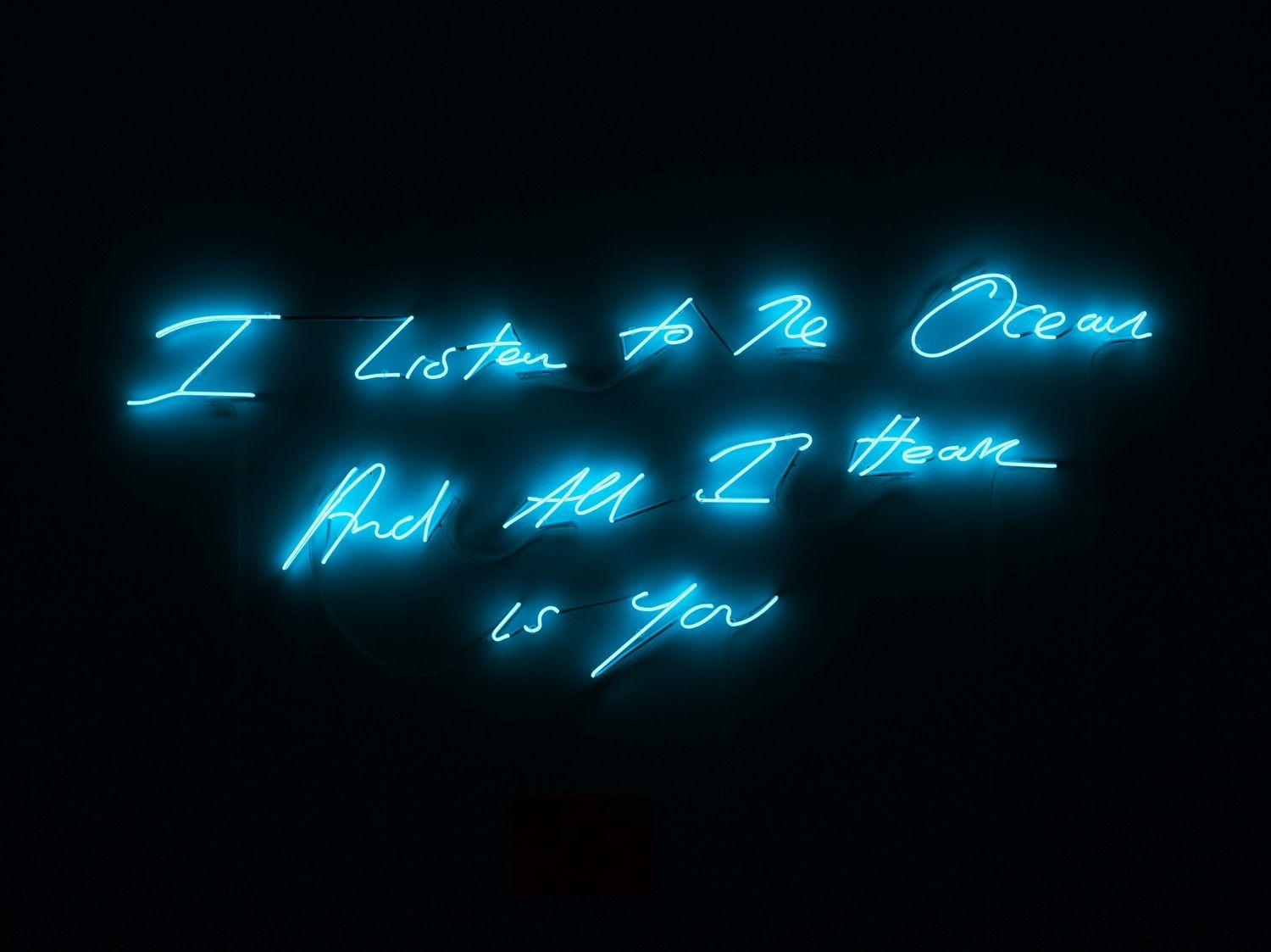 Because they're beautiful: Three artists write love letters in light.