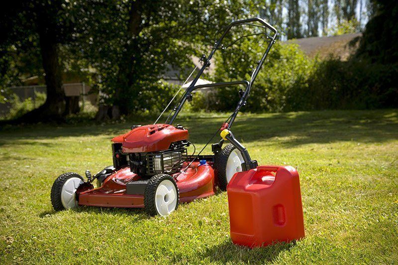 Electric Lawn Mowers Vs Gas Which Type Is Better Gas Lawn