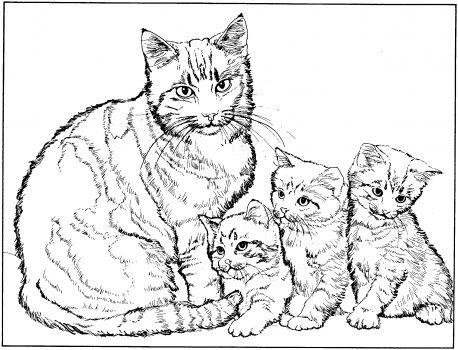Gatta Con Tre Micetti Disegno Da Colorare Coloring Pages Disegni