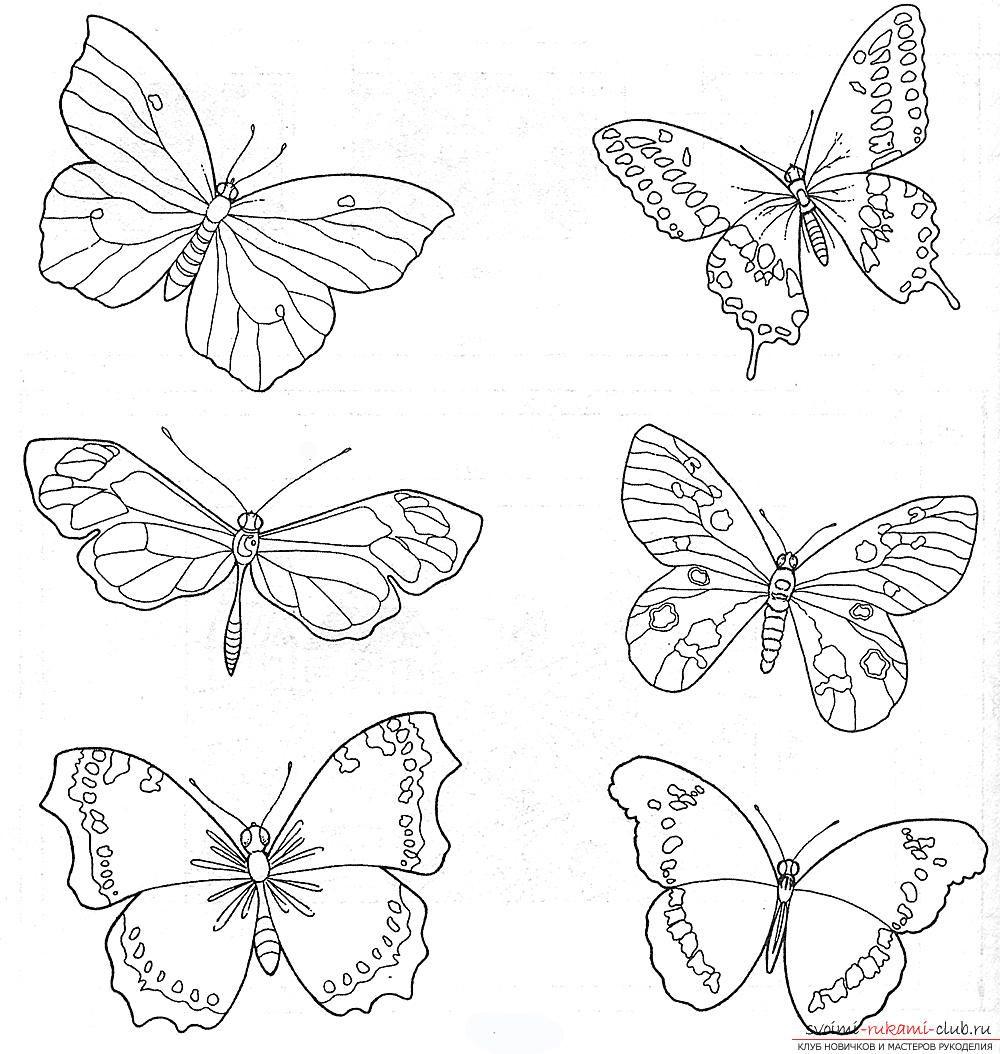 Схемы вышивки гладью бабочки. Фото №3 | Трафареты, Рисунки ...