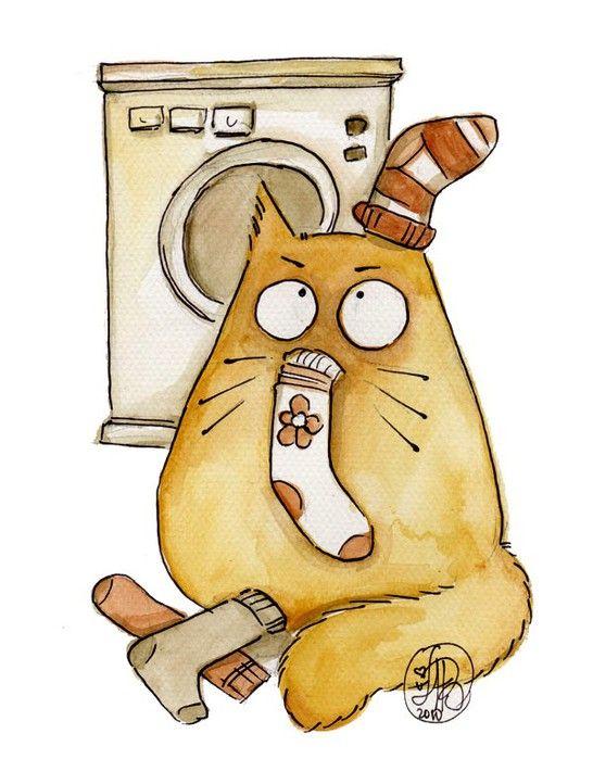 Смешные коты Maria van Bruggen