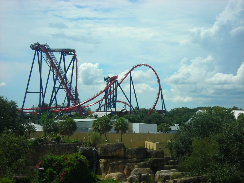 Marvelous #SheiKra At #BuschGardens #Tampa