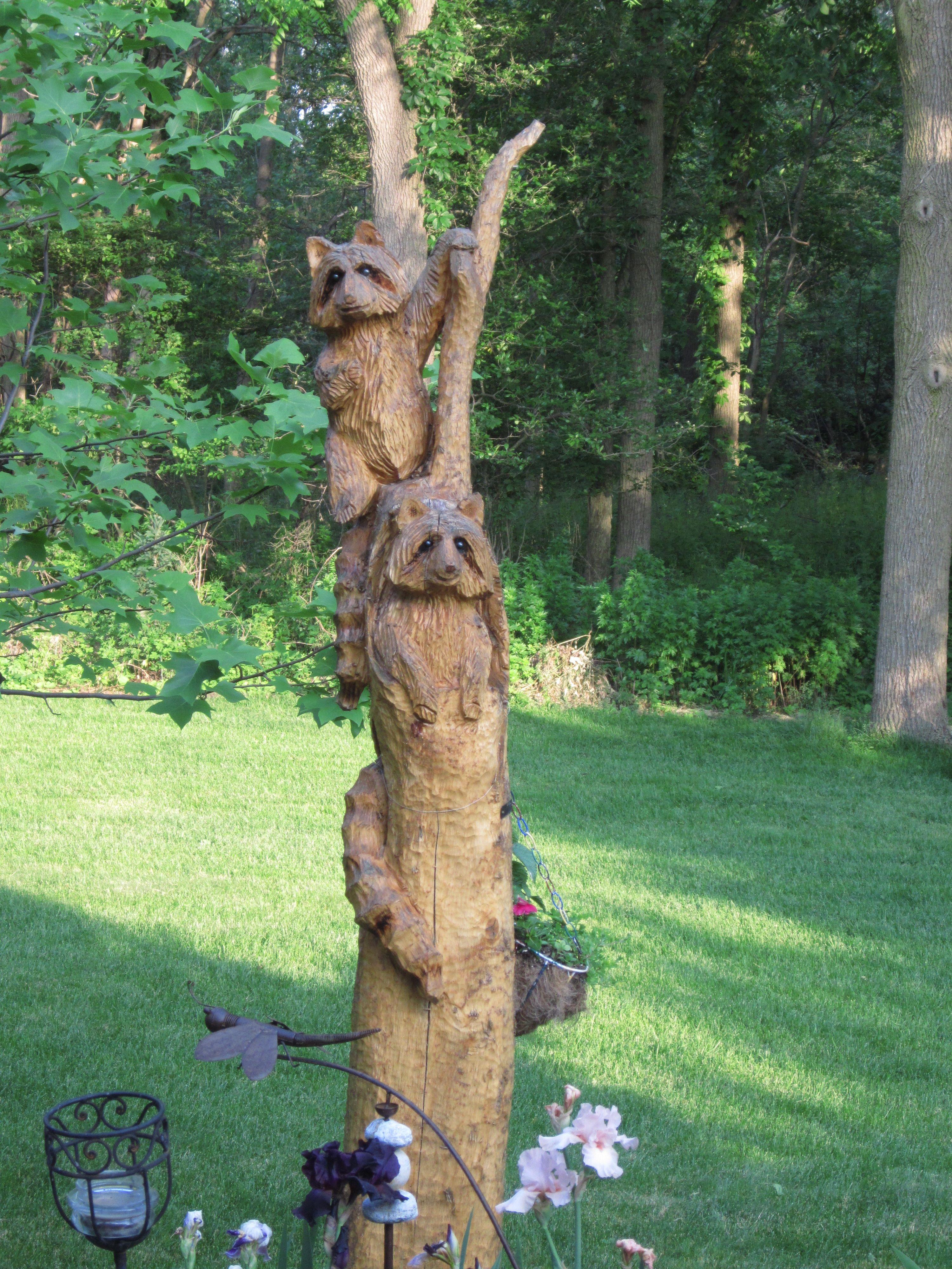 Tree carving raccoons gardening pinterest
