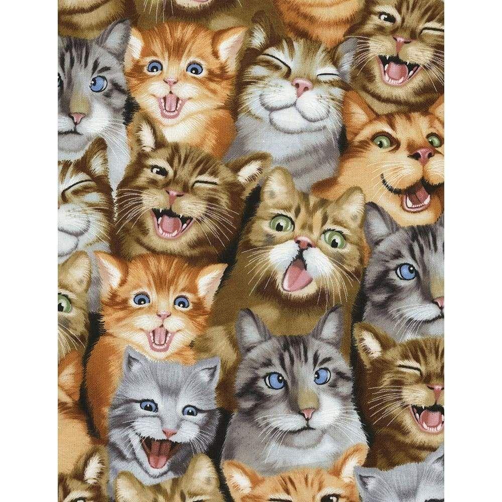 Selfie Cats Kittens Natural Timeless Treasures 6930 Cat Art Cat Selfie Cats