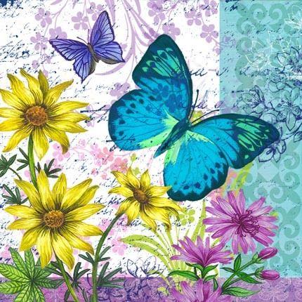 m dio butterfly print pinterest schmetterlinge schmetterling bilder und. Black Bedroom Furniture Sets. Home Design Ideas