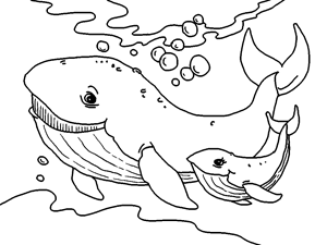 Free Printable Sea Animals Coloring Book For Kids Whale Coloring Pages Dolphin Coloring Pages Animal Coloring Pages