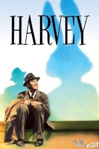 Chú Thỏ Harvey - HD