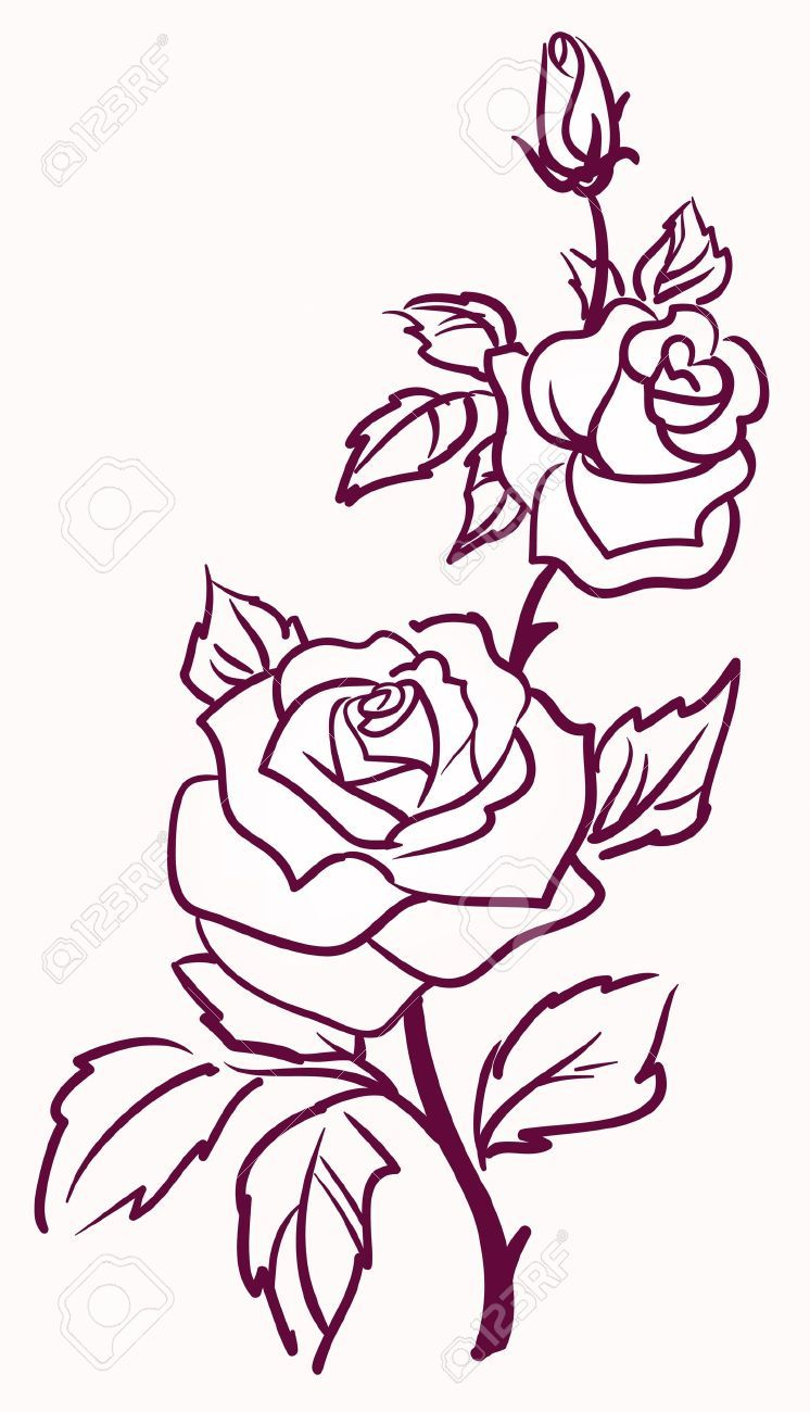 Three Stylized Pale Roses Isolated On Light Background Vector Flower Outline Rose Outline Rose Outline Tattoo