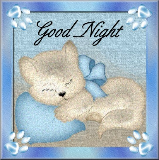 Good Night Peeps Quotes: Cute Good Night Wishes : Greetings