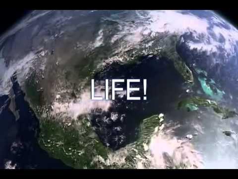 Biologia La Ciencia De La Vida Youtube Ciencias De La Vida