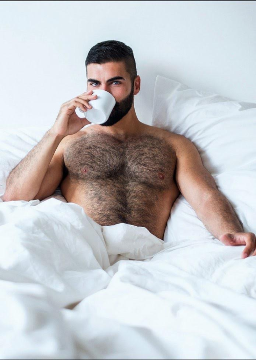 in hairy bed guys