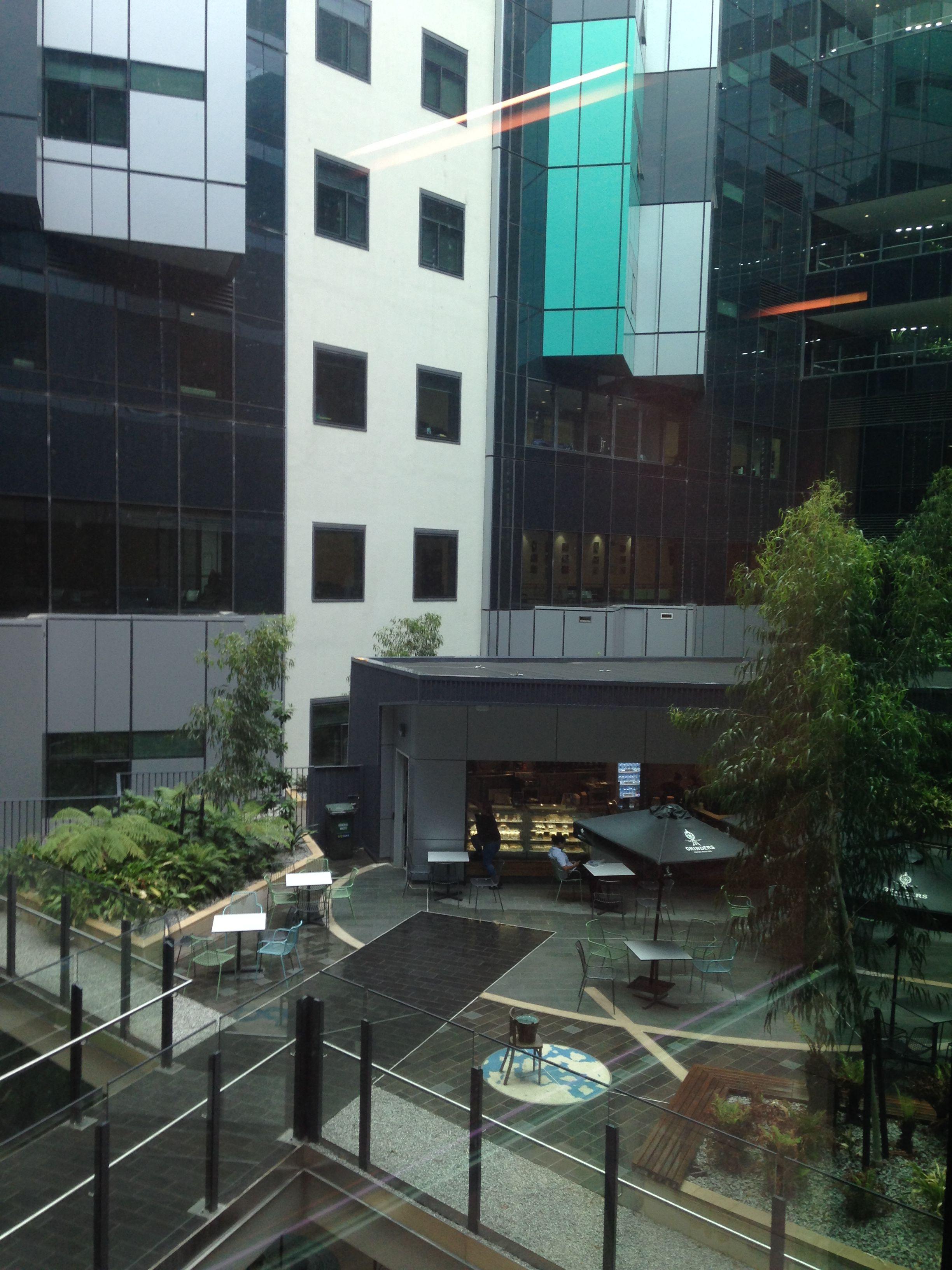 Royal Adelaide Hospital Atrium view from inside   SOUTH