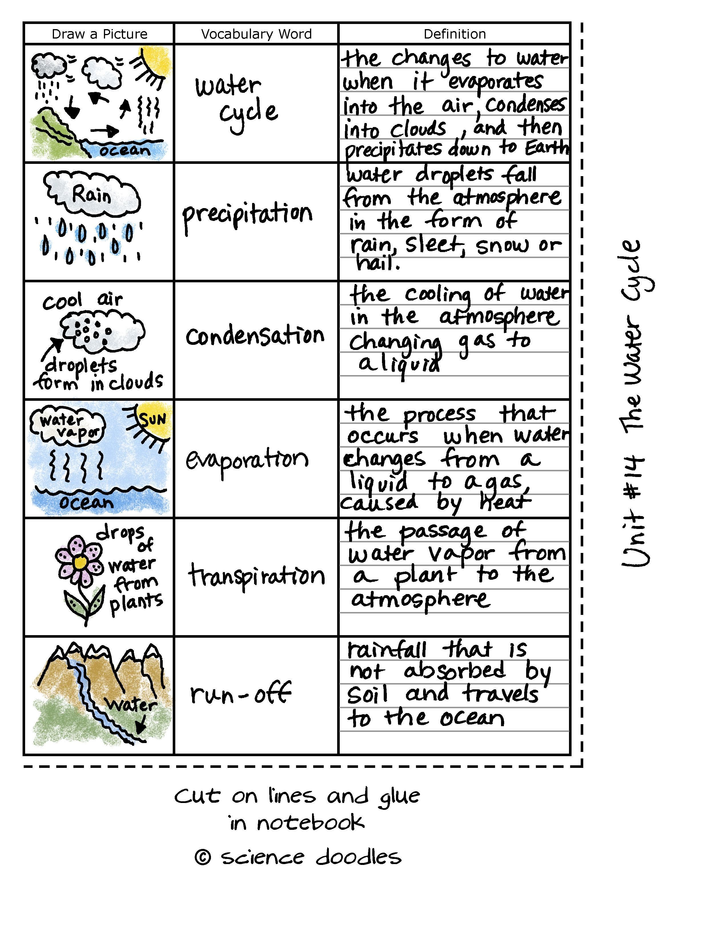 Worksheet Science Doodles Science Lessons Science Classroom