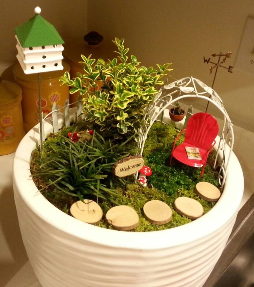 The WINNERS from The Great Annual Miniature Garden Contest ...
