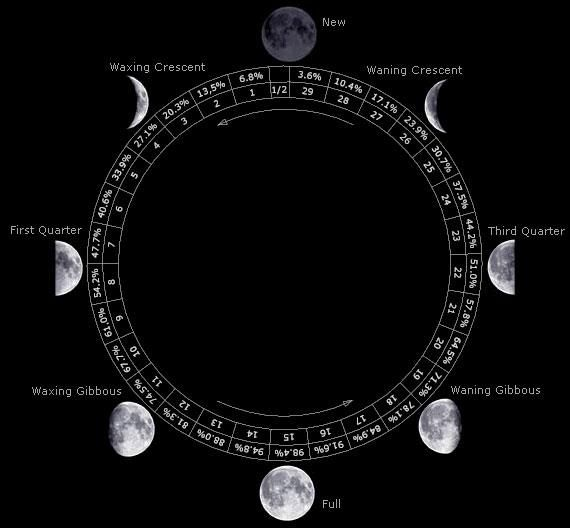 .phases of the moon, moon cycles