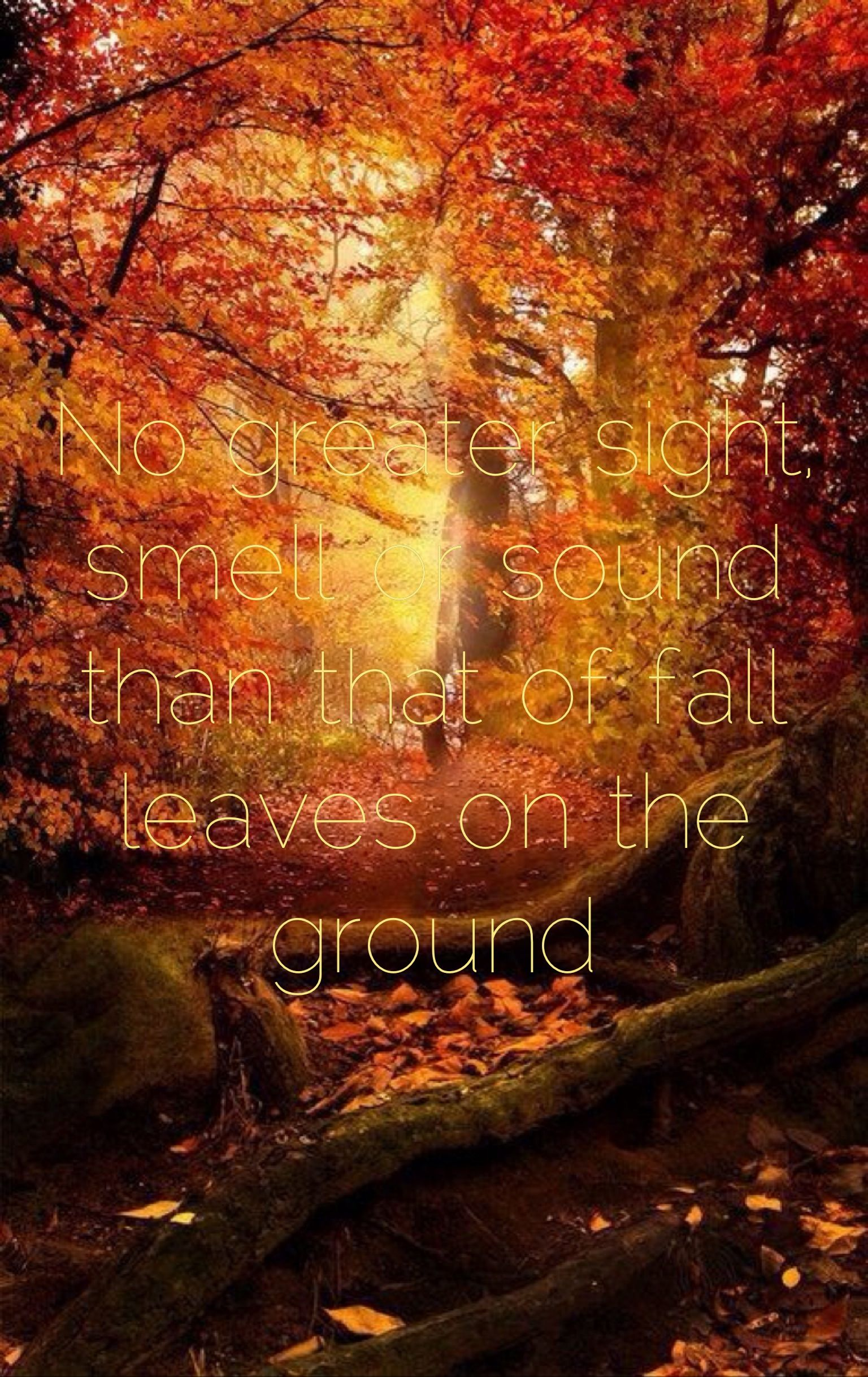 falling leaves quotes like - photo #29