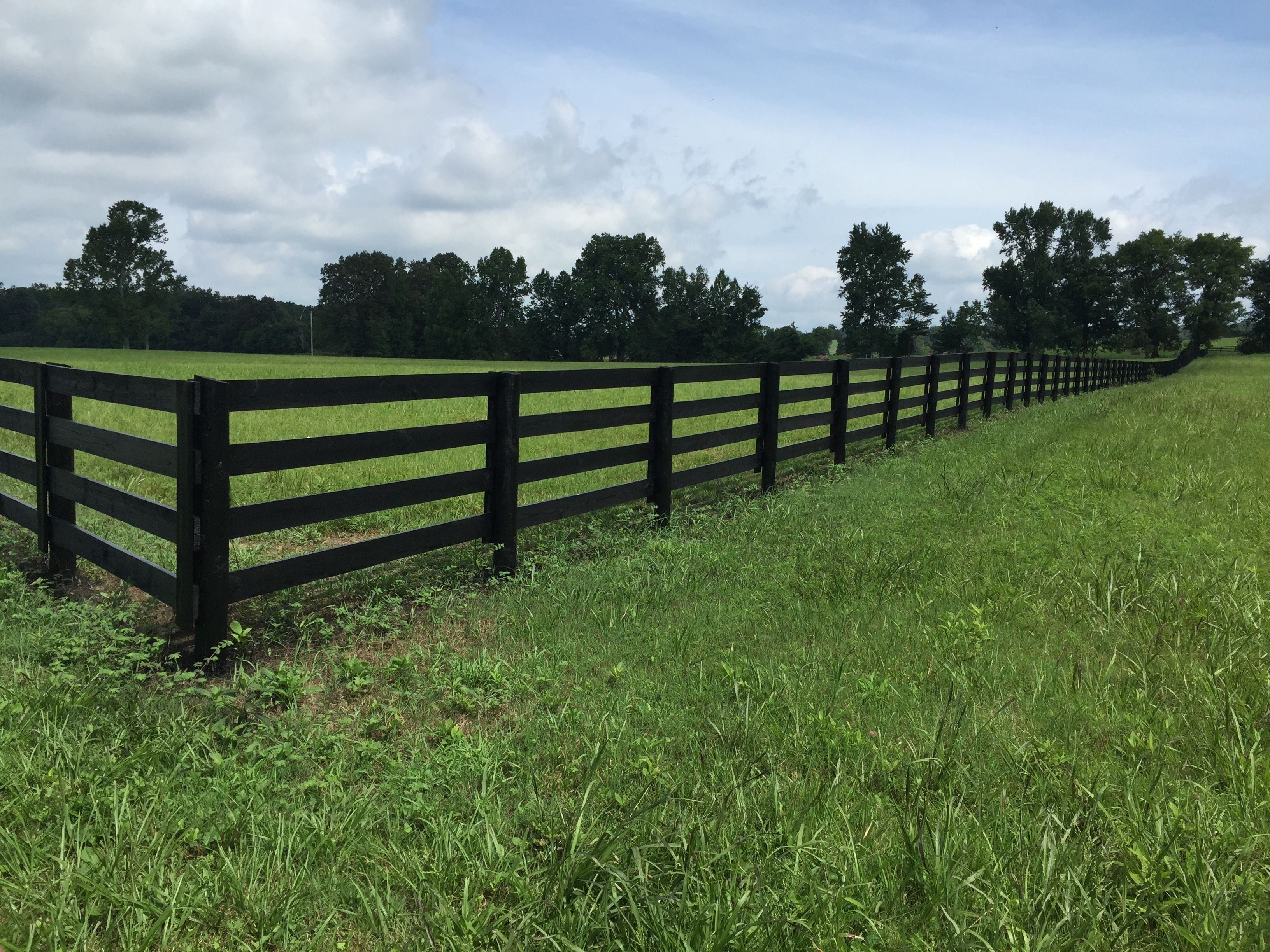 Black Painted 4 Rail Plank Fence On Tennessee Equine Farm Horse Fencing Farm Fence Fence Styles