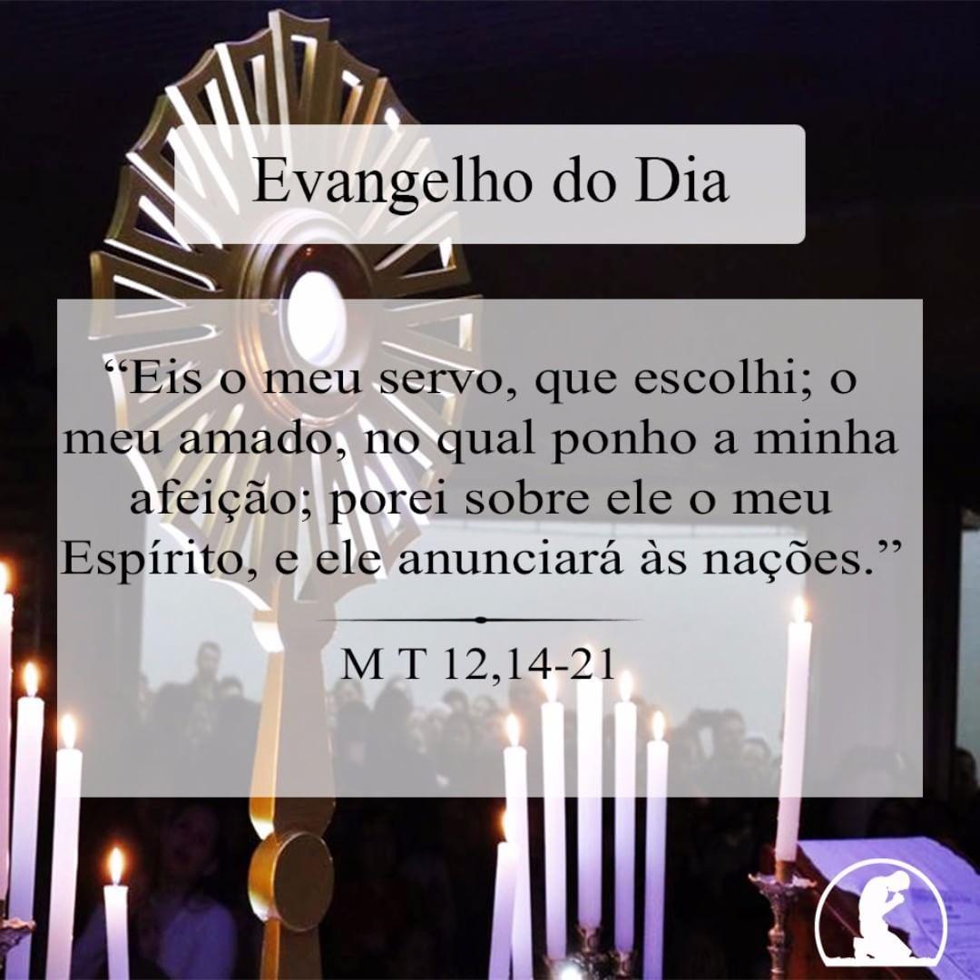 Evangelho Do Dia Mt 1214 21 O Senhor Esteja Convosco Ele Esta