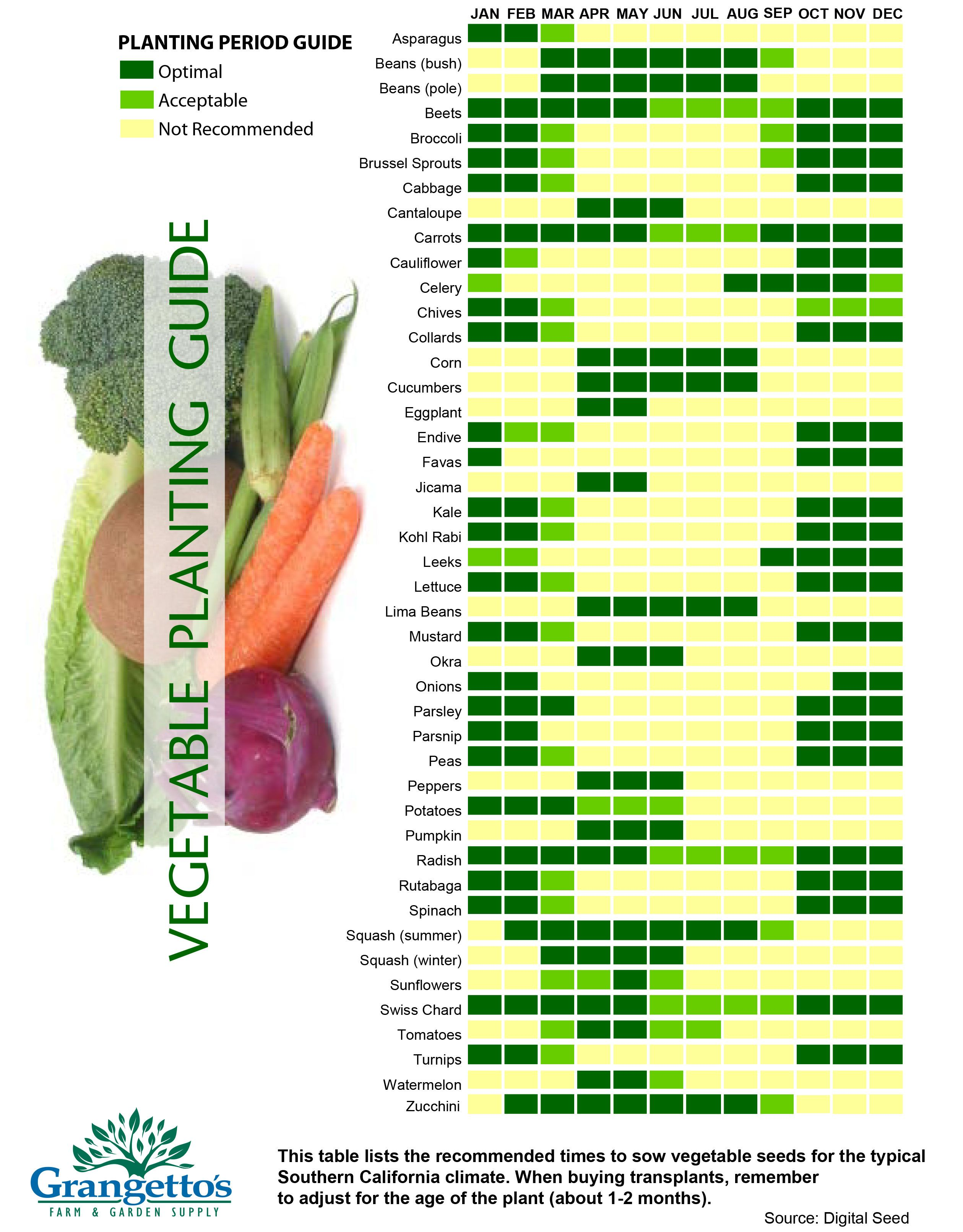 What You Need To Know About Organic Gardening Vegetable Planting Guide Vegetables Growing
