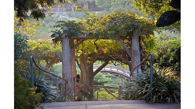 12c81fd96d714823dcf0dae3a9149634 - Botanical Gardens Los Angeles Huntington Library