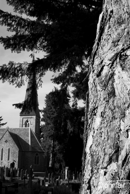 Beneath the tree st patricks church enniskerry county wicklow beneath the tree st patricks church enniskerry county wicklow ireland if you ever visit the east coast of ireland do yourself a favour an solutioingenieria Choice Image
