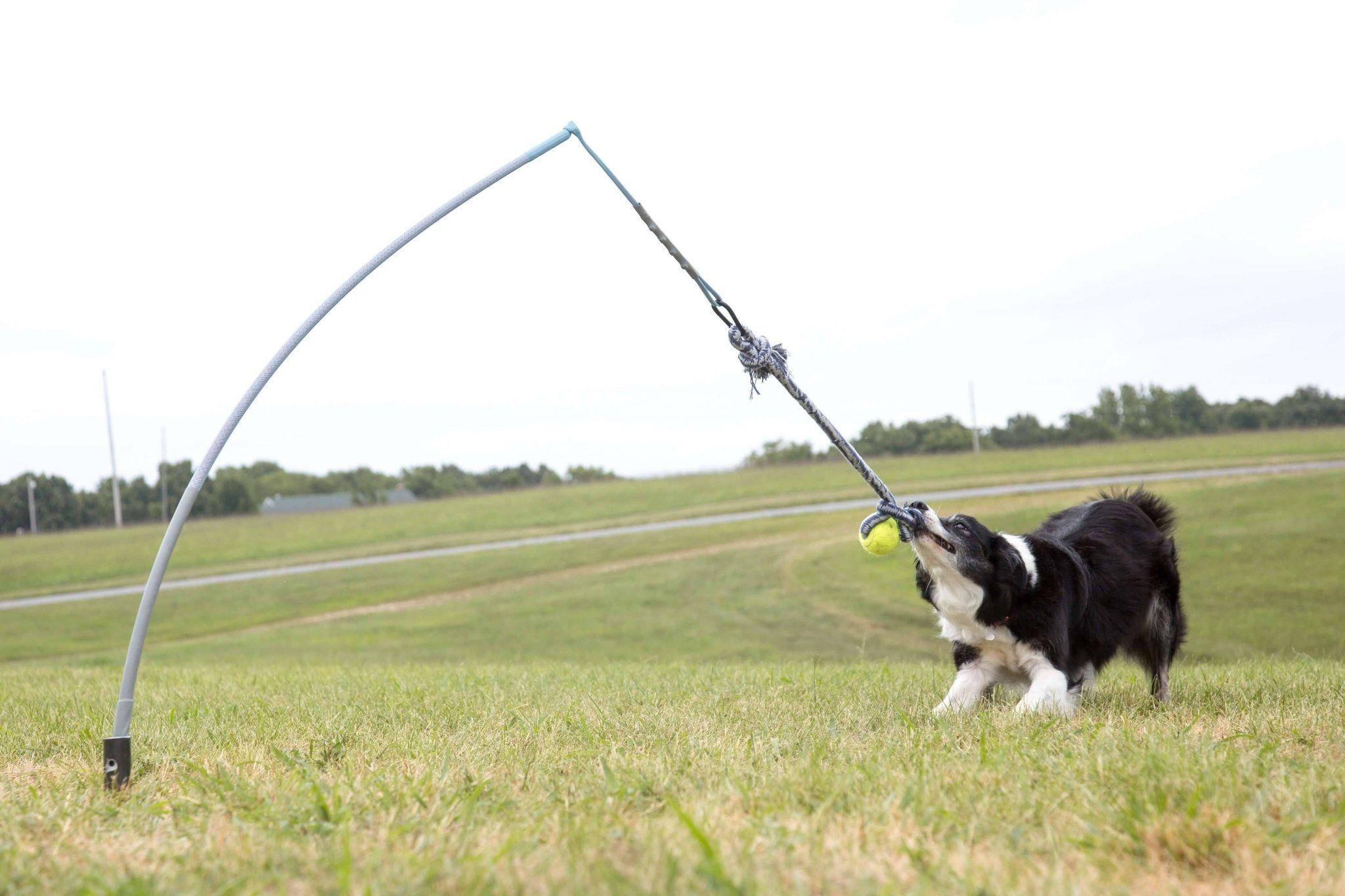 Small Tether Tug 35 Lb Outdoor Dog Toys Smart Dog Toys Dog