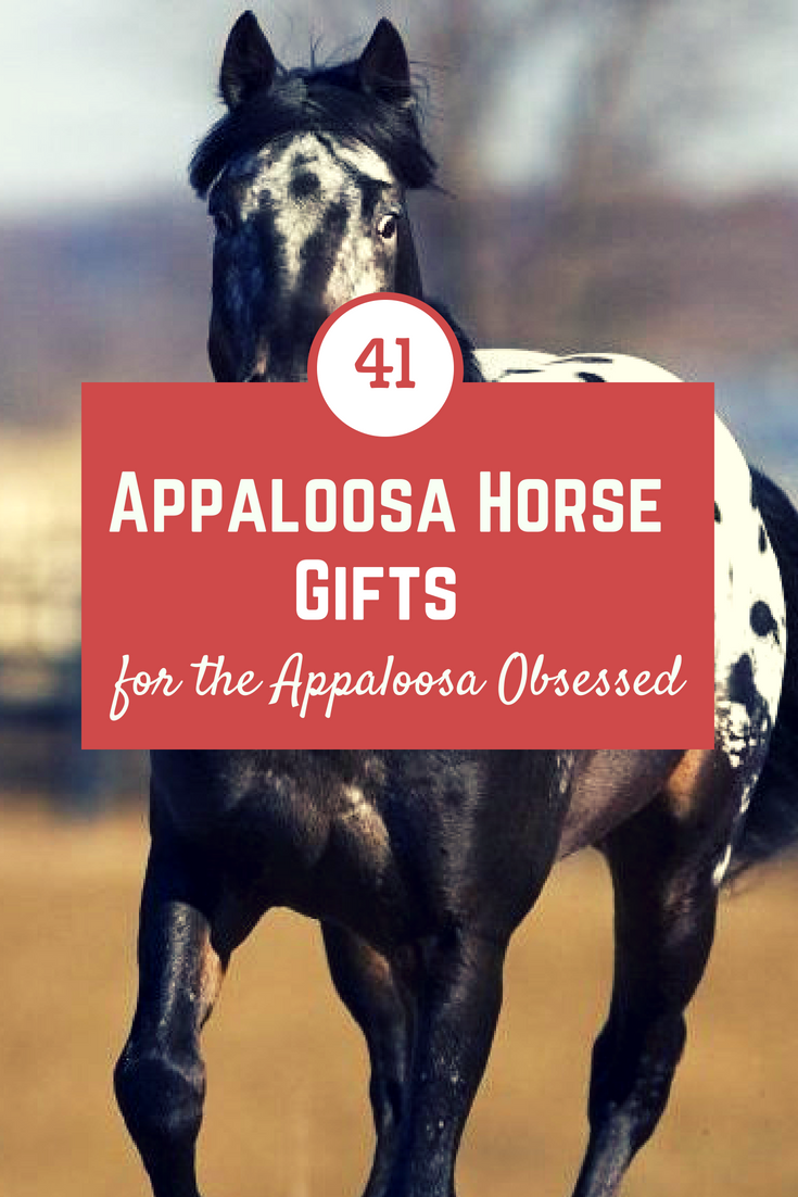 If you or someone you know loves Appaloosa horses, you'll love this Appaloosa