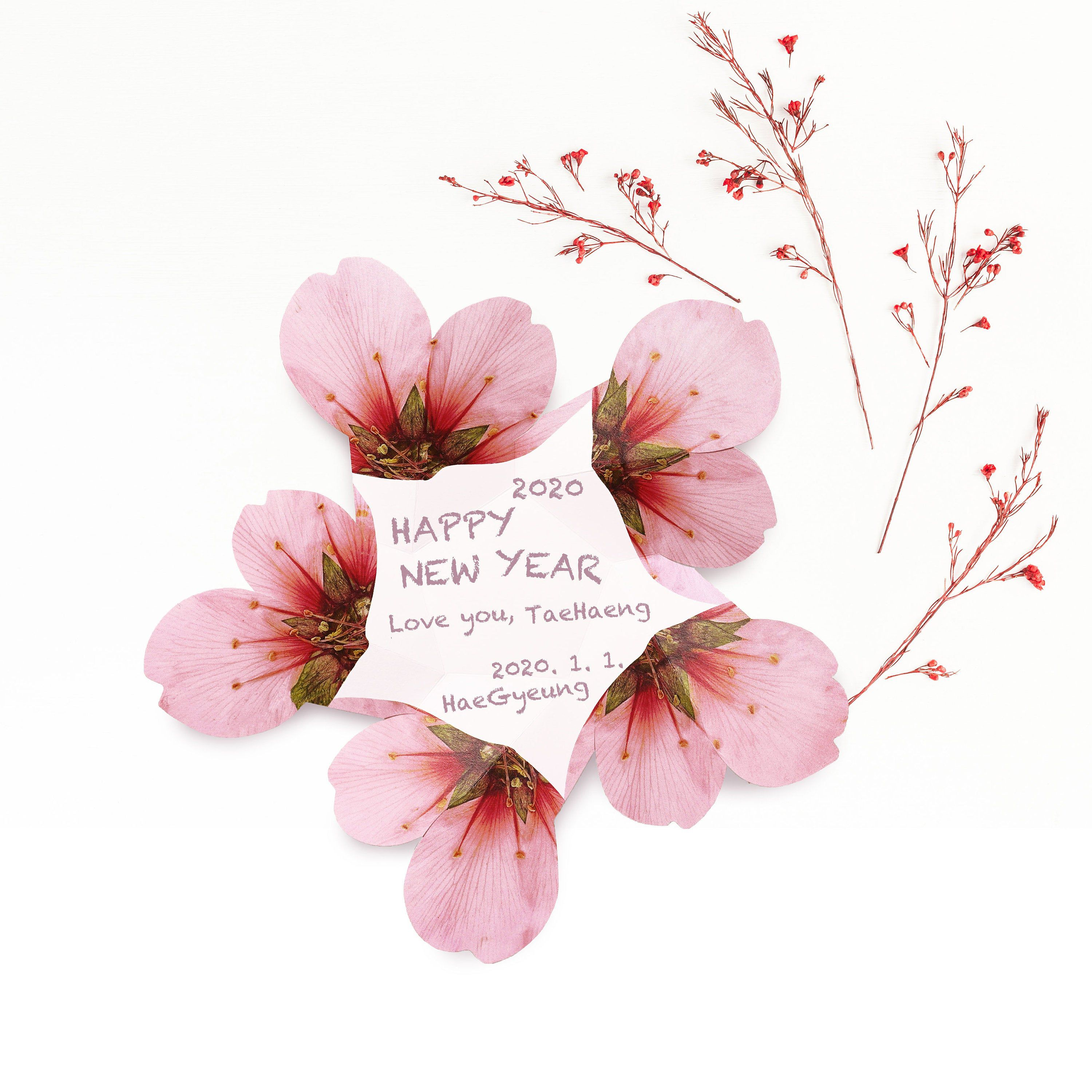 Pdf Template Almond Flower Pink Mother S Day Father S Day Flower Unique Card Greeting Card Birthday Card Pop Up Card Wedding Invitation In 2020 Birthday Card Pop Up Flower Cards Almond Flower