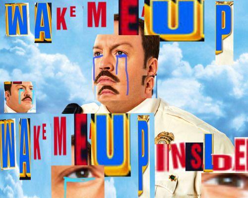 wake me up inside meme - Google Search | Funny memes, Paul ...
