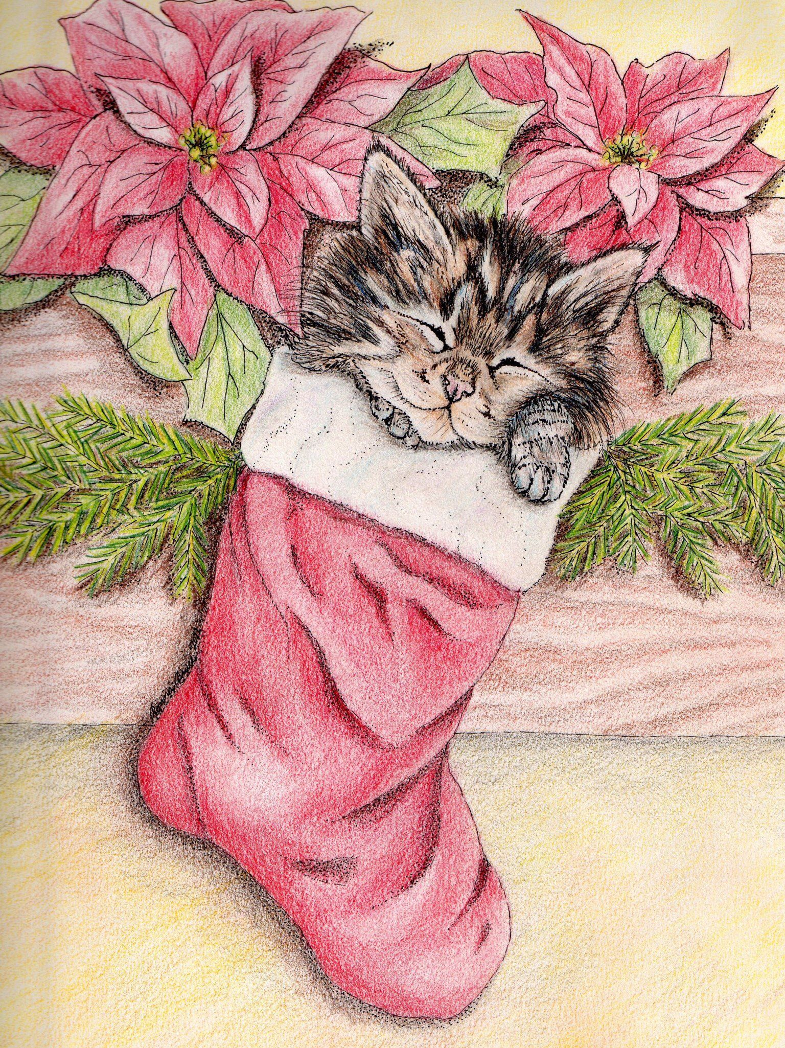 Christmas Kitten, original, pencil and ink.