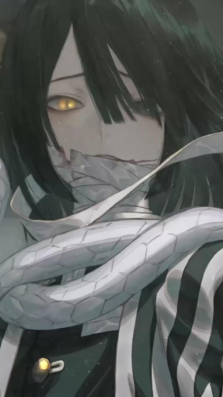 Obanai Iguro Iguro Obanai Is A Demon Slayer And The Serpent Hashira Of The Demon Slayer Corps 3 Obanai Cute Anime Chibi Anime Wallpaper Live Anime Neko