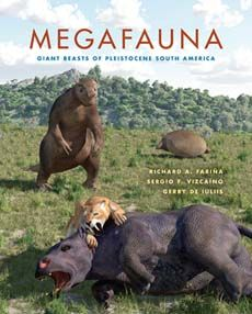 Spectacularly Large Mammals Roamed The Pampas And Jungles Of South America 10 000 Years Ago During And Just After The Gr Ausgestorbene Tiere Tiere Aussterben