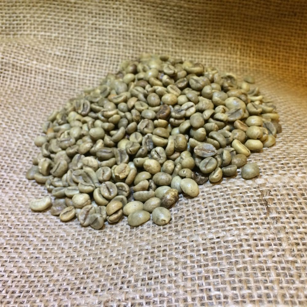 5 Pounds Green Vietnam Polished Robusta Coffee Beans in