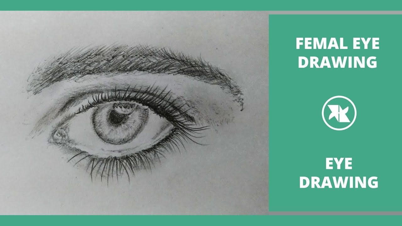 How to draw a Realistic Eye for Beginners   Eye drawing ...