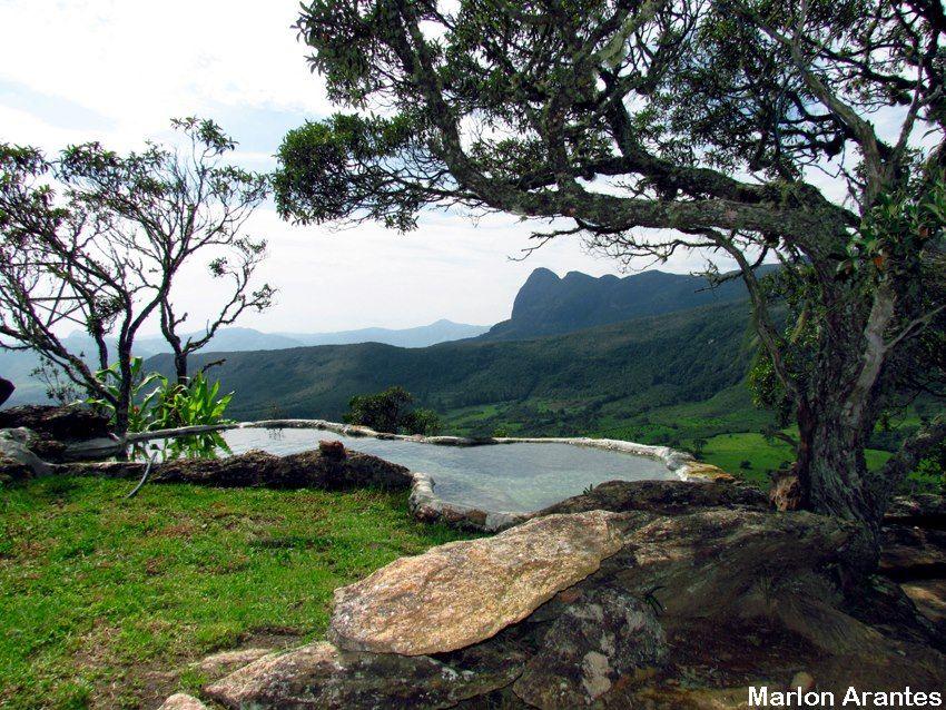 Canto das Bromélias | AIURUOCA | Pinterest