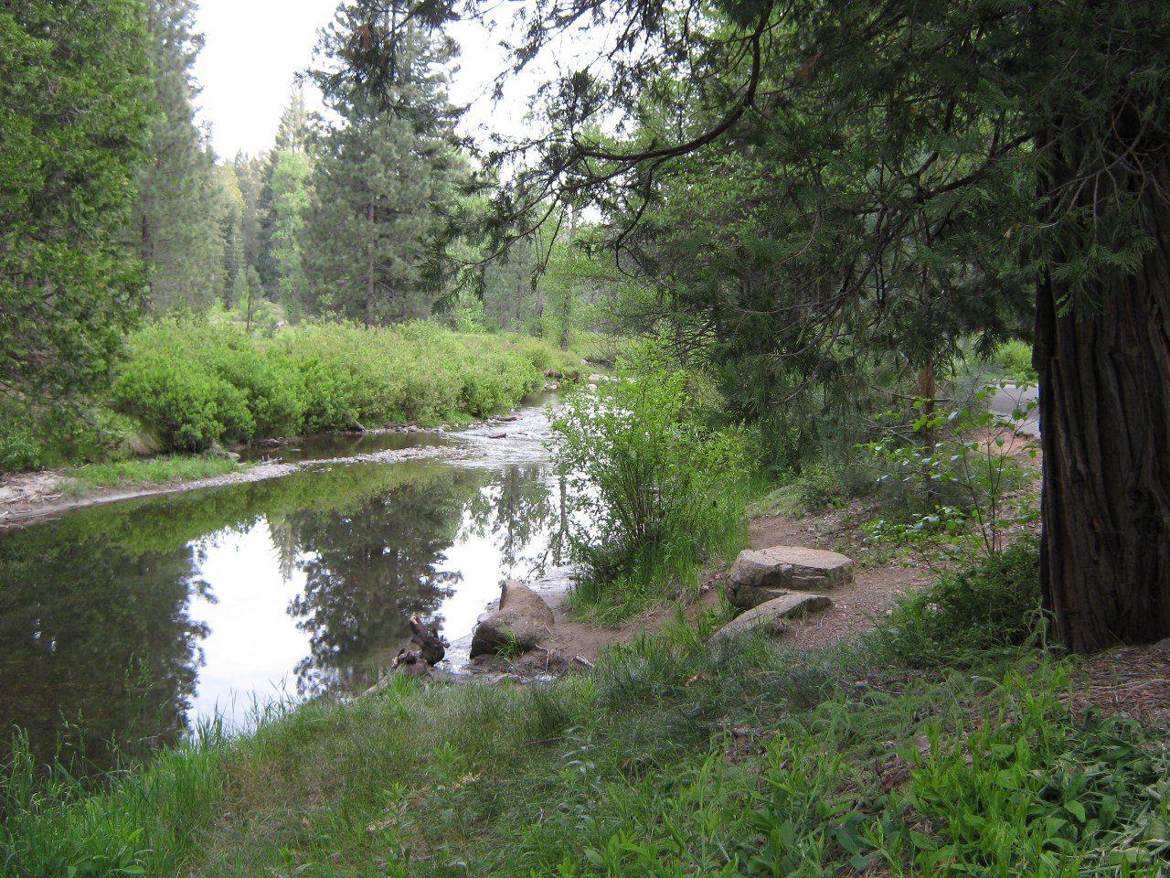 Summerdale Campground, Sierra National Forest