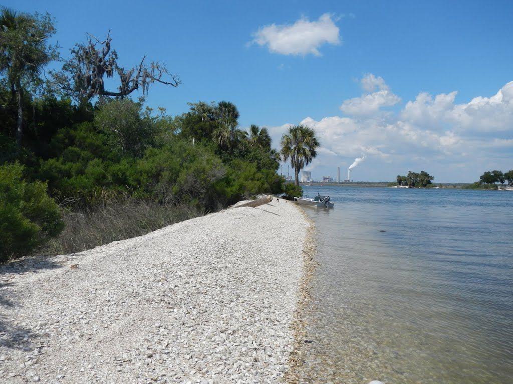 Shell Island Beach Photo Taken In Crystal River Fl 34428 Usa 28 55