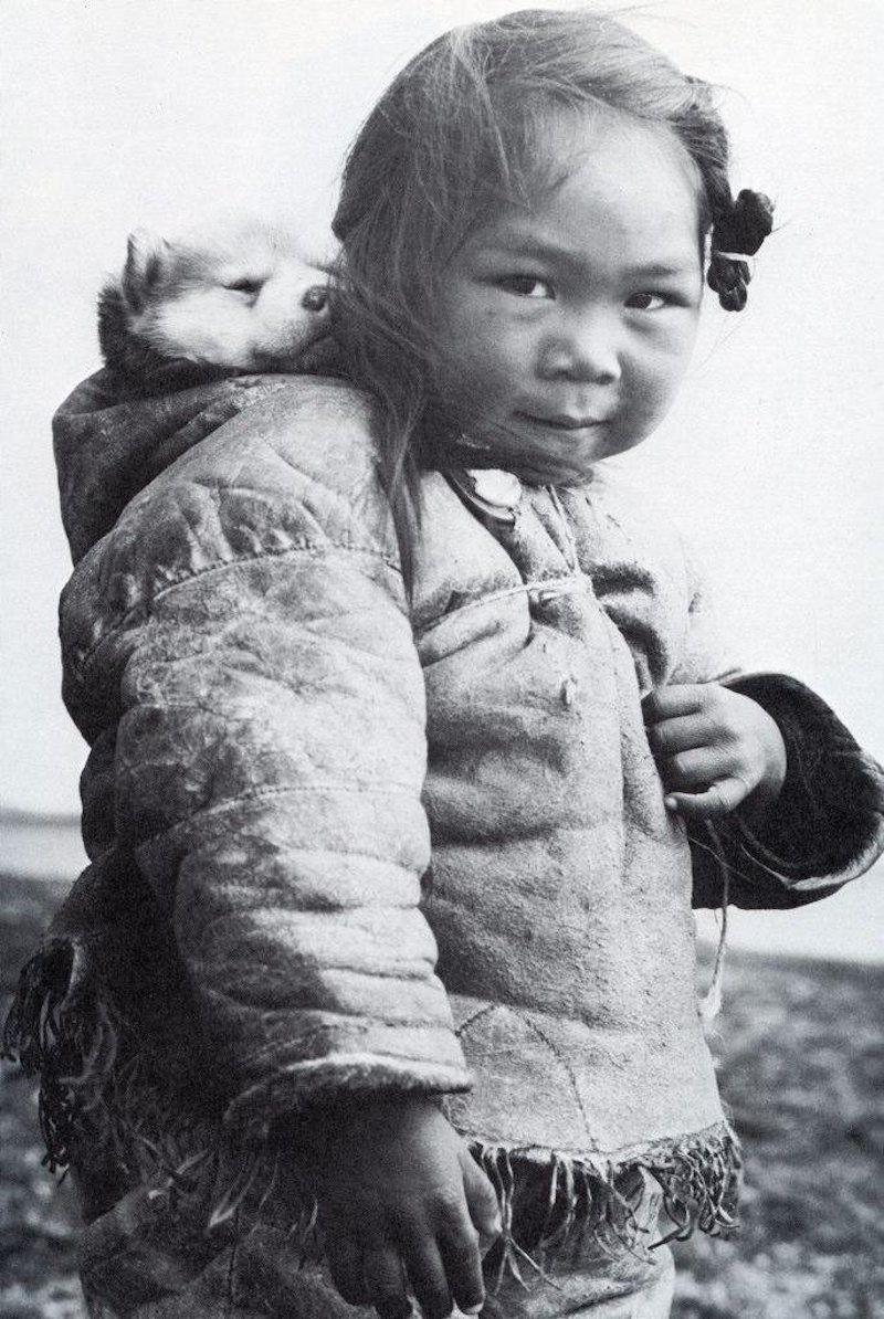 inuit and her husky kids pinterest