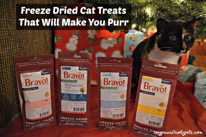 Bravo Freeze Dried Cat Treats Will Make You Purr