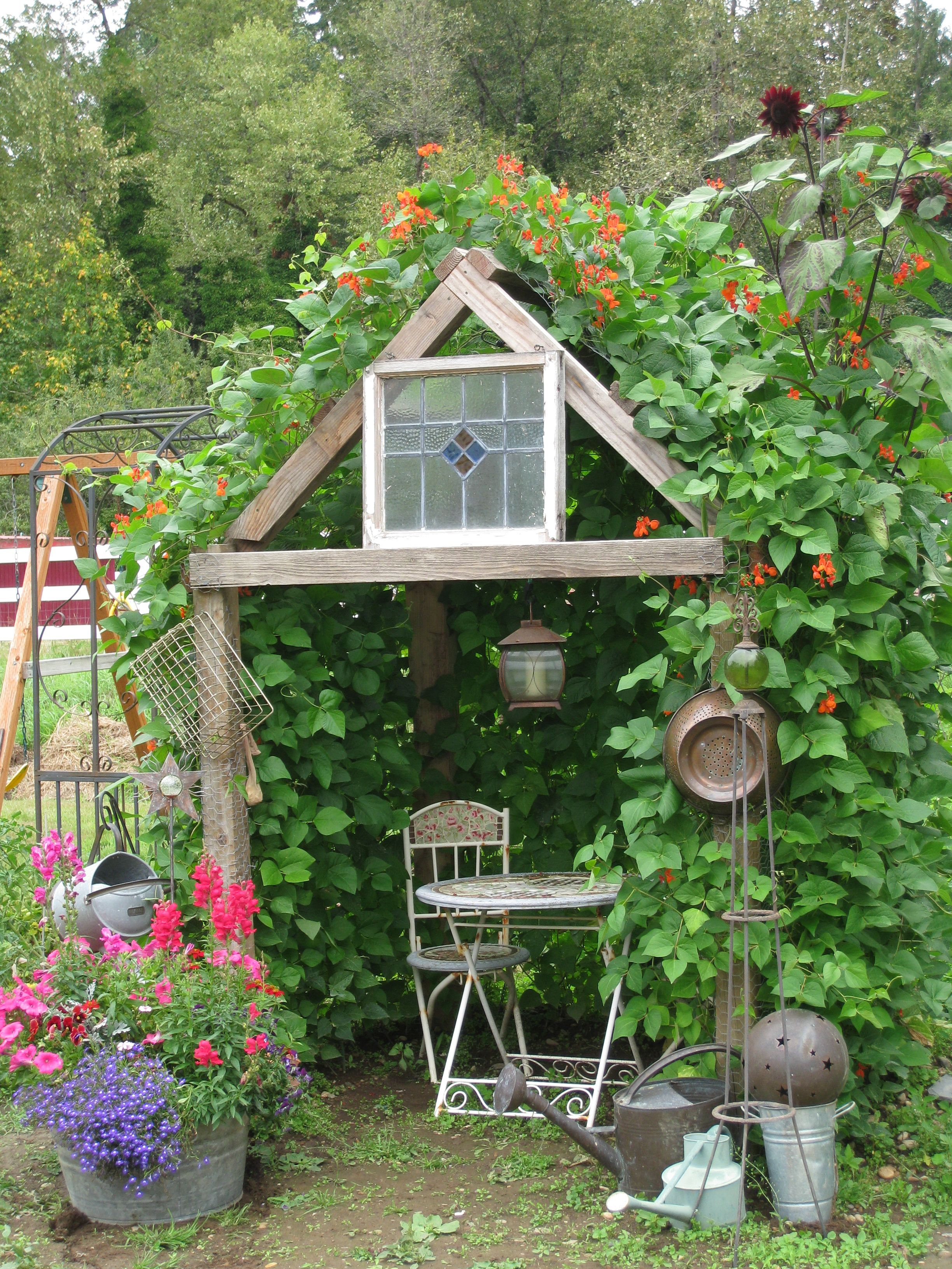 My Bean House We Built A Primitive Frame Covered With Chicken Wire And Let Scarlet Runner Beans Take Ove Garden Inspiration Amazing Gardens Whimsical Garden