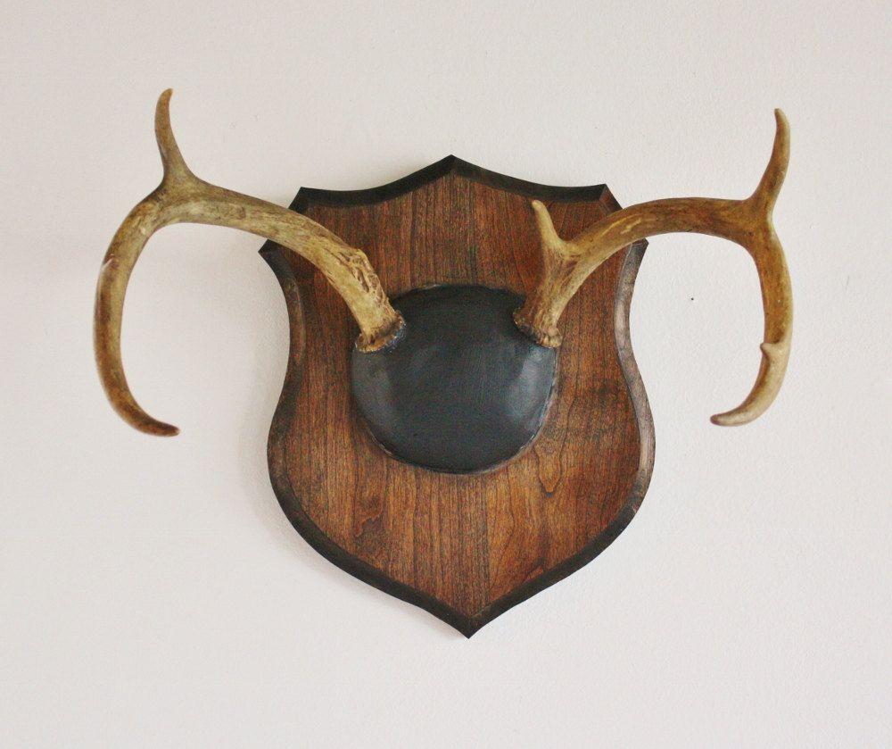 Vintage Deer Antlers Mounted On A Solid Wood Plaque Etsy