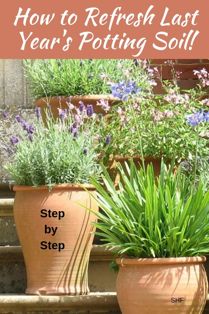 refresh your potting soil and save money | gardening how tos