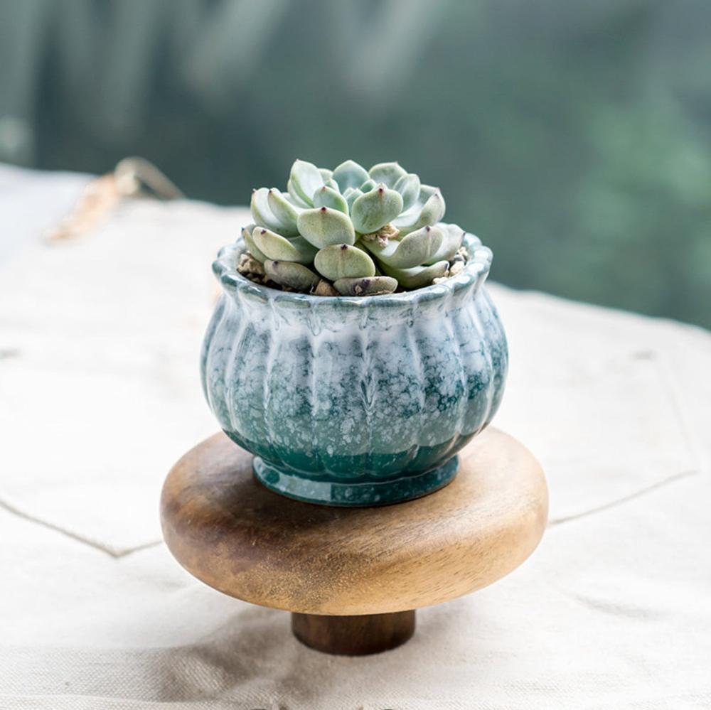 Small Ceramic Succulent Planter With Drainage Hole Succulent Pot Table Decor Indoor Decor Winter Creeks Bearie S Garden Ceramic Succulent Planter Ceramic Succulent Succulent Planter
