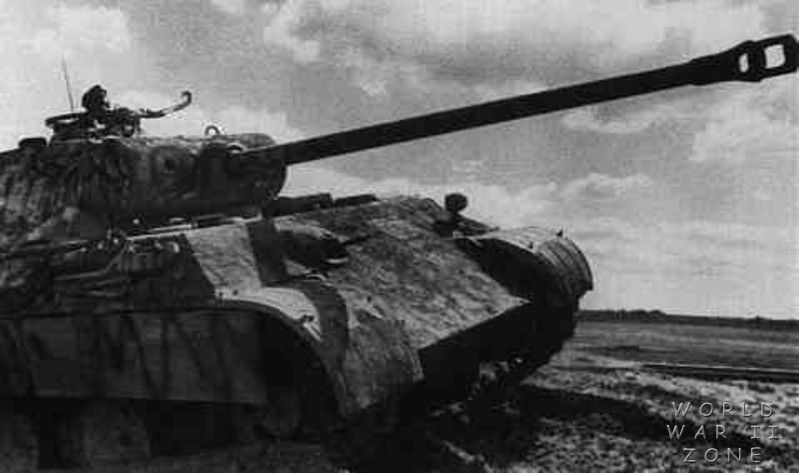 Panzer IV 5th SS Panzer Division Wiking Russia | World War