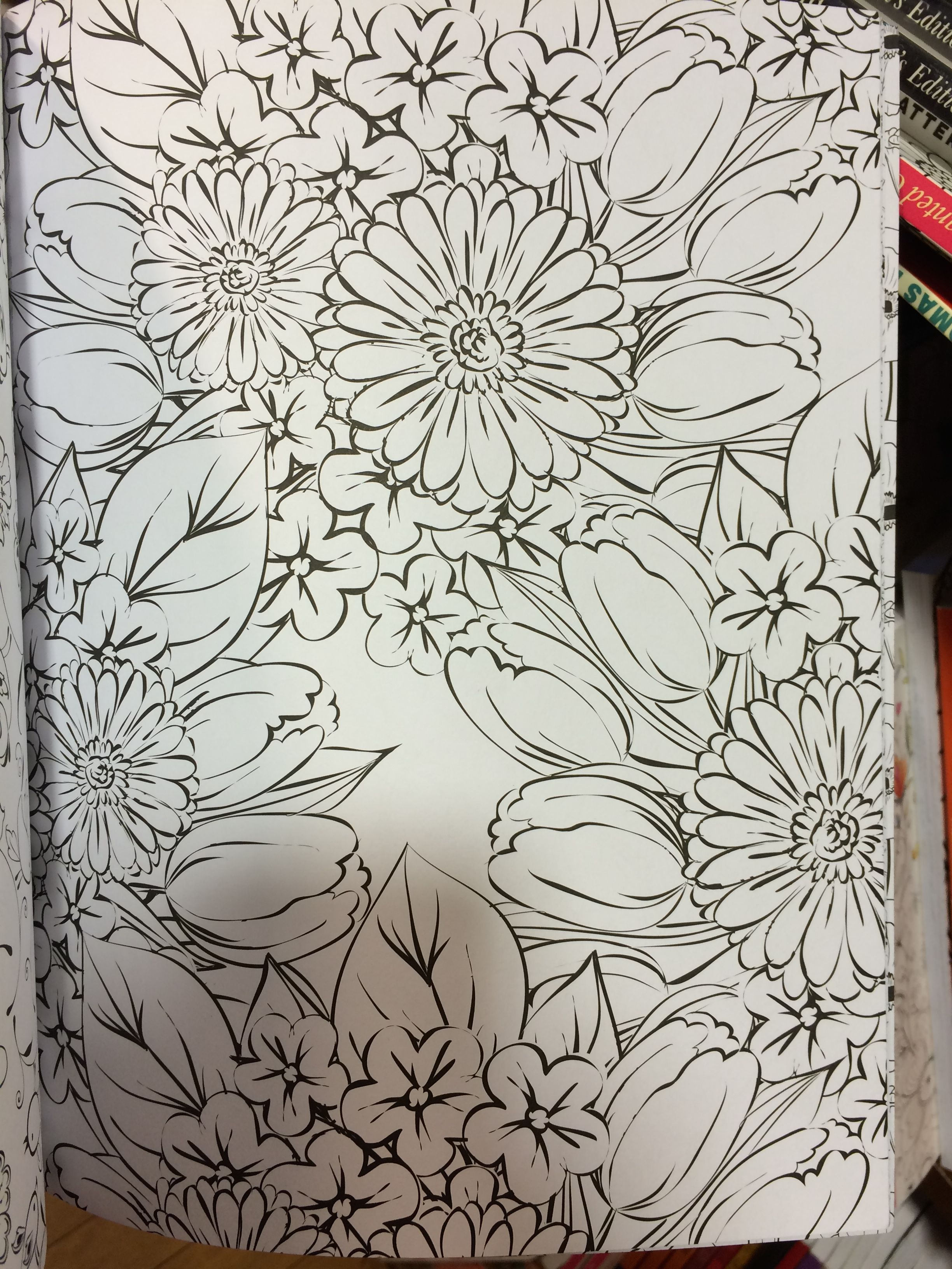 Another type of tulip pattern (outline) in a coloring book ...