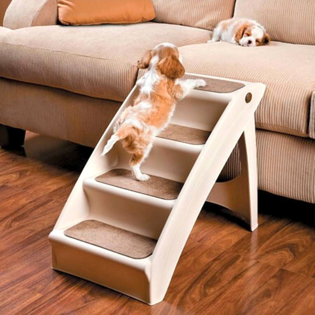 This stair might be good for Basset Hounds. DogProducts