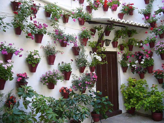 Maravillas Ocultas De España Cordoba Y Su Juderia Un Bello Paseo Por Sus Calles Plants Spain Cordoba