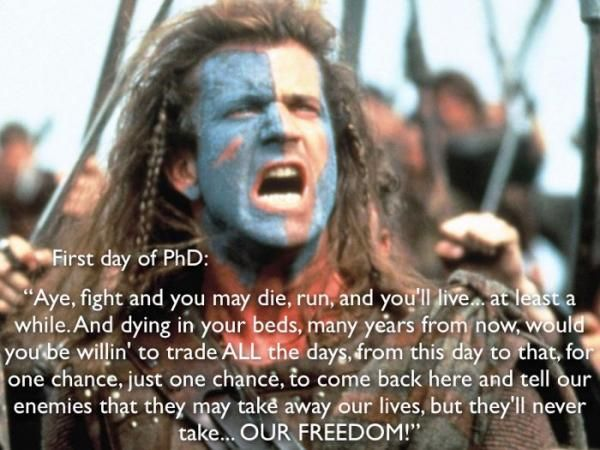 Braveheart Quotes Best Famous Movie Sayings Our Freedom