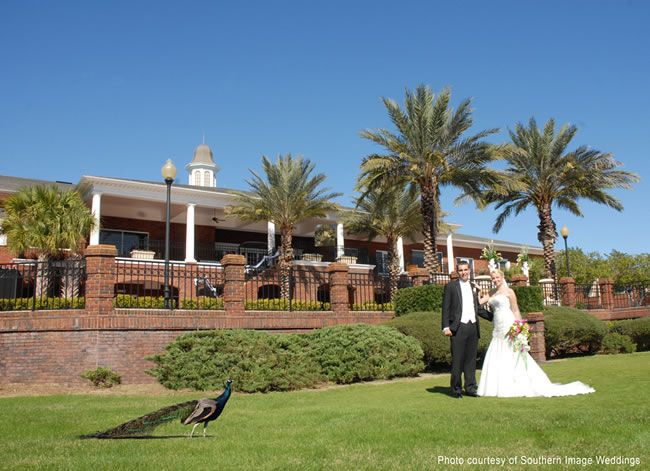 Harbor Hills Golf Country Club Lady Lake Venue Ideas Pinterest Reception And Clubs