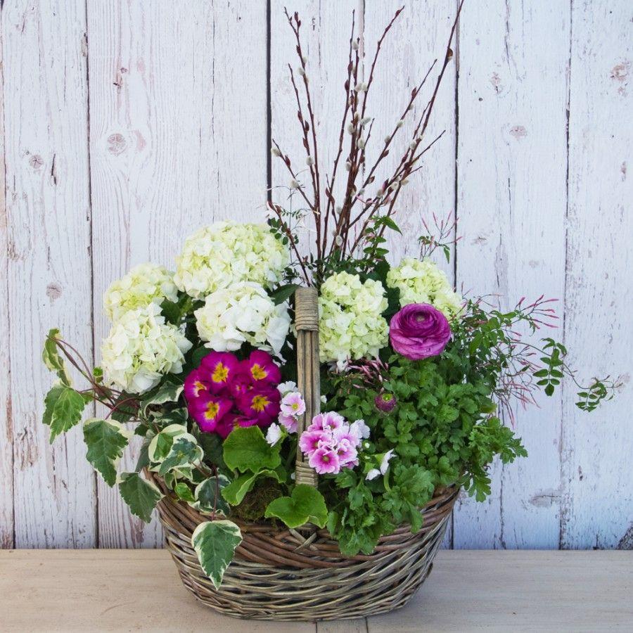 Lush European Basket Indoor plants, Flower pots, Plants